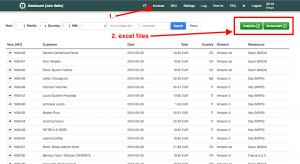 export excel files about sales and reports for accountant